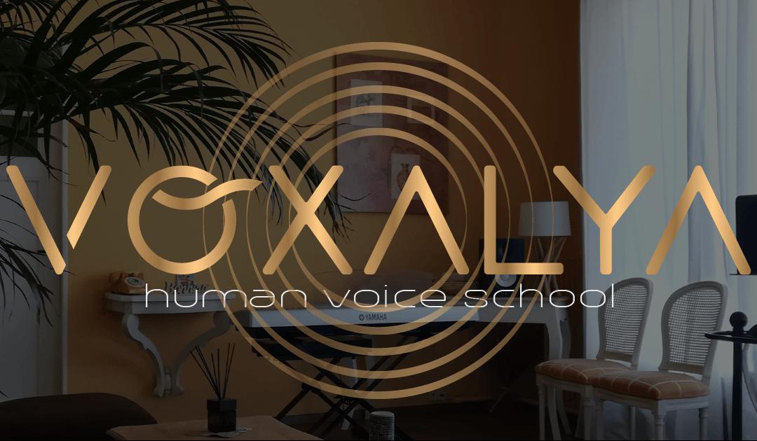 Voxalya fait son blog !